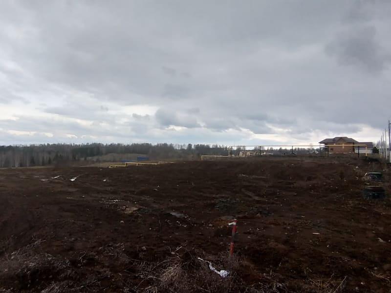 Лесная поляна проект Адажио